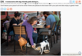 6 restaurants with dog-friendly patio dining in the San Fernando Valley
