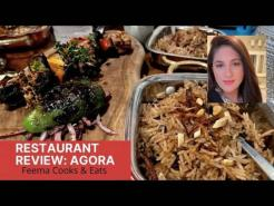 RESTAURANT REVIEW WASHINGTON DC| AGORA (Halal) |TURKISH FOOD
